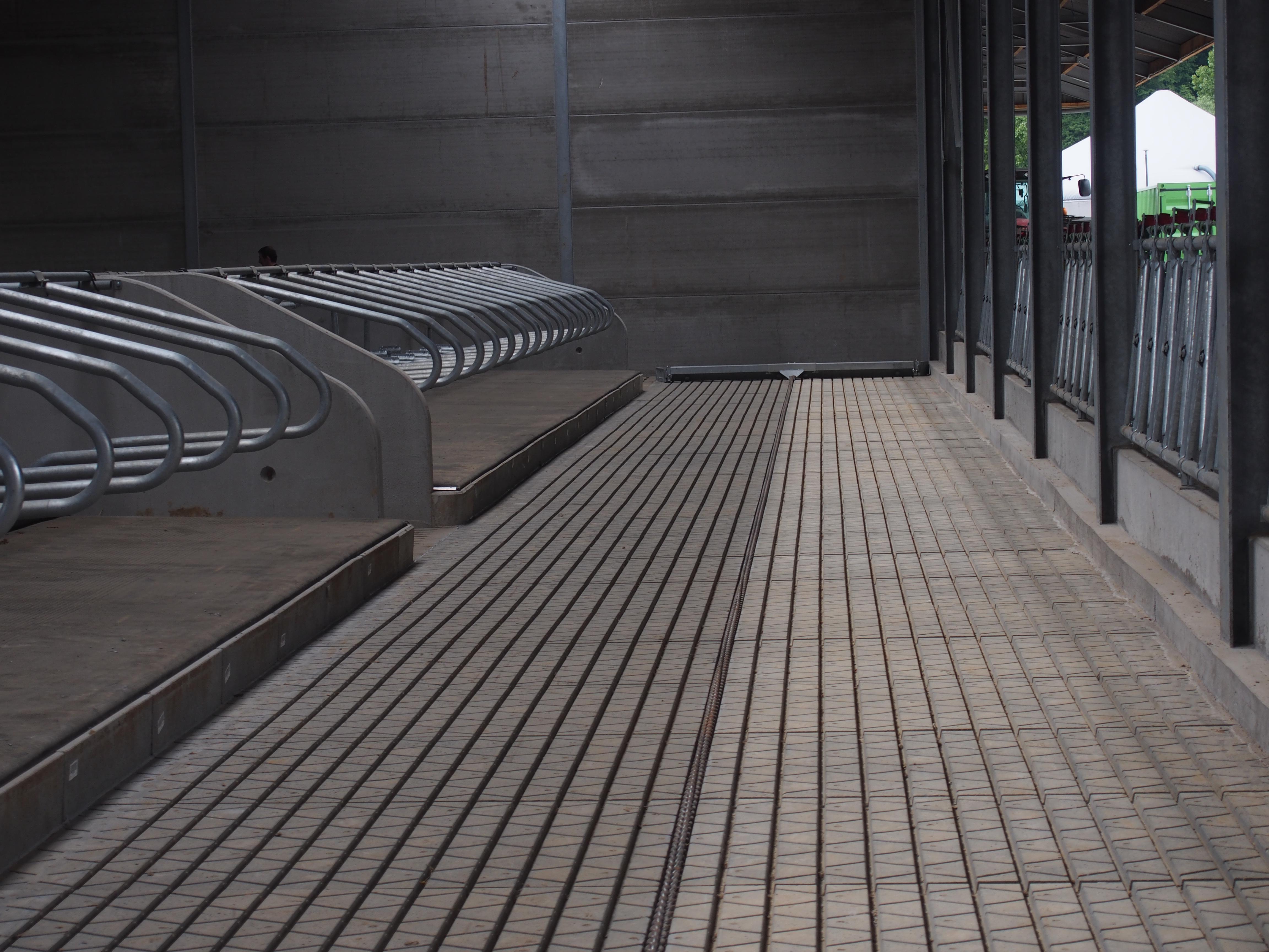 dichte sleufvloer in beton voor rundvee cobefa. Black Bedroom Furniture Sets. Home Design Ideas